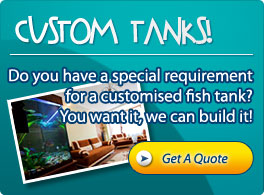 Custom Tanks Gold Coast, Brisbane